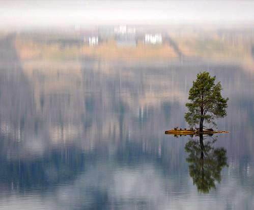 Beautiful little island with a lonely tree and a magic reflection