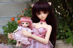 Clover & Katty