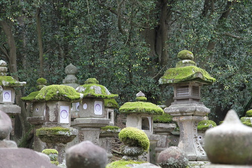 Farolillos de piedra en Nara