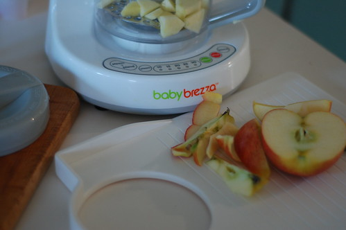 5640699664 82610a90b6 WIN! and make baby food at home with Baby Brezza