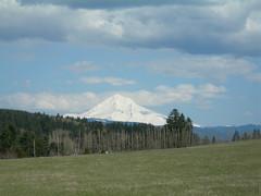 The summit of Mount Hood from Devil's Backbone