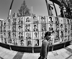 TOKYO ELECTION (ajpscs) Tags: street bw blancoynegro japan japanese tokyo blackwhite nikon election streetphotography monochromatic  nippon  blkwht grayscale fisheyelens d300 105mm   monokuro ajpscs nikonflickraward tokyoelection