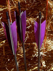 Custom Made Arrows