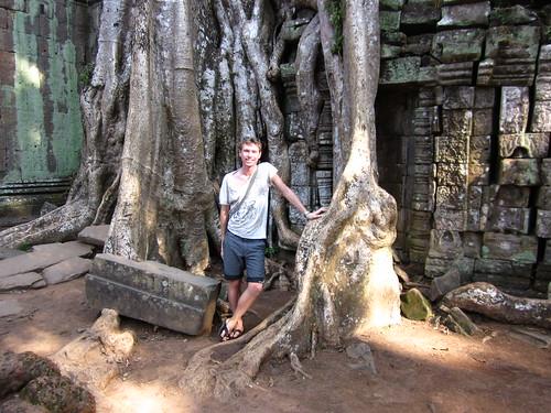 Ta Prohm, Angkor temple