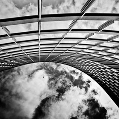 Curve (thelearningcurvedotca) Tags: street sky urban bw white toronto canada black reflection building bird tower lines architecture clouds canon square photo downtown outdoor canadian minimal areyouready wwwareamagazinecom blipfree dpsbw blogtophoto ayrcontestpointofview