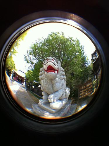 iPhone4に185°魚眼レンズKSW-4をつけて定点撮影。レンズ有 #izawaopt
