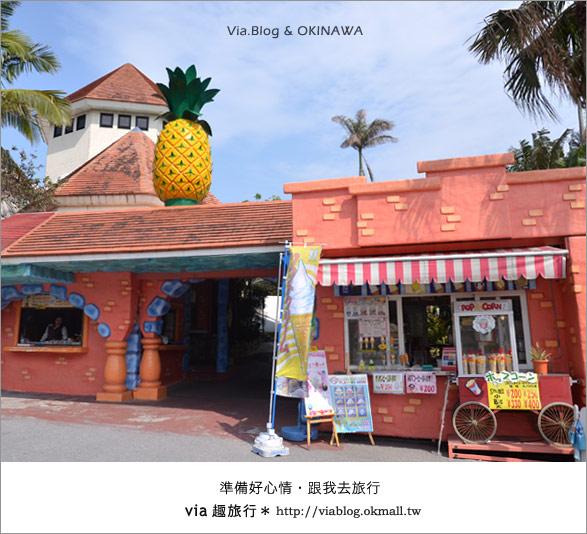 【via的沖繩旅誌】名護鳳梨公園~可愛又香甜的鳳梨樂園!5