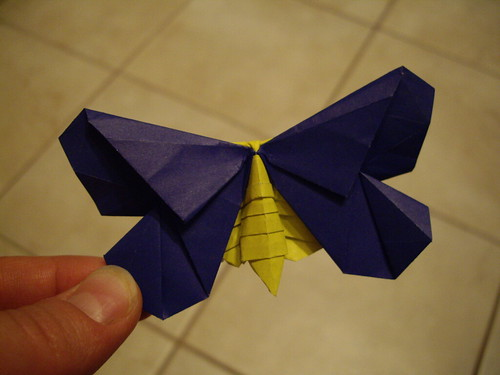 The La Fosse Moth