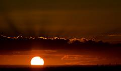 Last Rays (wolfcat_aus) Tags: camera sunset red orange nikon bigma australia melbourne victoria dx 150500mm d7000 sigma150500mm nikond7000 fireballsunset sigma150500mmf563apdgos