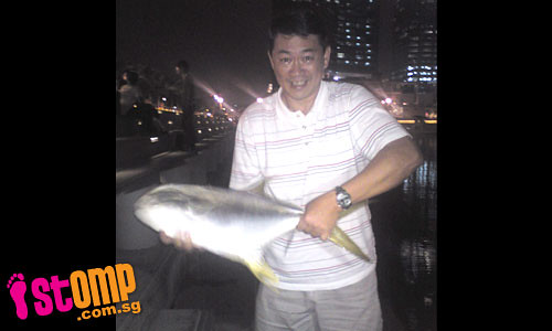 Man catches 3kg pomfret at MBS...with his bare hands