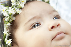 Salomé (AniSuperNova83) Tags: baby angel princess corona bebe crown salome princesa brighteyes ojosbrillantes supernova83 anamariarincon anisupernova