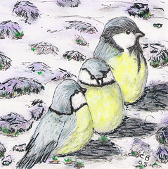My Art 4 (carlene byland) Tags: snow art birds ink pencils drawing