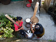 Pounding rice in Mizo style (azara ralte) Tags: life india culture tribal east moment tribe sum suk zonu popularculture poundingrice mizo workingwoman mizoram northeastindia traditionalstyle localstyle tribalculture mizostyle buhdeng mizonu hmeichhia zomia mizowomen zochhangdeng treshingrice chhangdeng