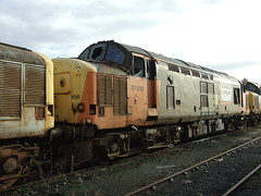 37698 (Trev 'Big T' Hurley) Tags: 37698 class37 scraploco withdrawn 37 loadhaul favourite oldfriend celebrity tractor margam demic scrap rotting