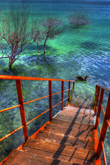 Stairway at  Kournas lake (Theophilos) Tags: trees lake reflection water goose stairway kournas
