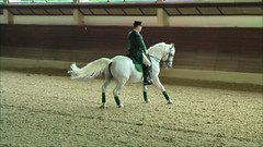 "Lipizzaner Dressage • <a style=""font-size:0.8em;"" href=""http://www.flickr.com/photos/64637277@N07/5890907724/"" target=""_blank"">View on Flickr</a>"