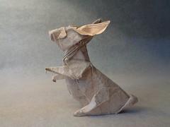 Zai (mrmicawer) Tags: papiroflexia origami papel conejo bunny zai rabbit