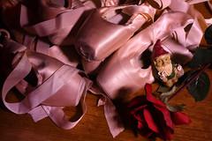 500_2345 (DianeBerky19) Tags: nikond500 wyoming gnome ballet shoes pointe lightpainting studio