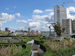 Secret Garden (metrogogo) Tags: secretgarden birmingham libraryofbirmingham alphatower rotunda gardens hedges