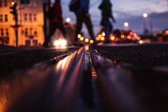 three little bears (ewitsoe) Tags: tram line city citylife urban people crossing ewitsoe nikon d80 35mm street life autumn fall tracks bokeh lines poland europe eu polska