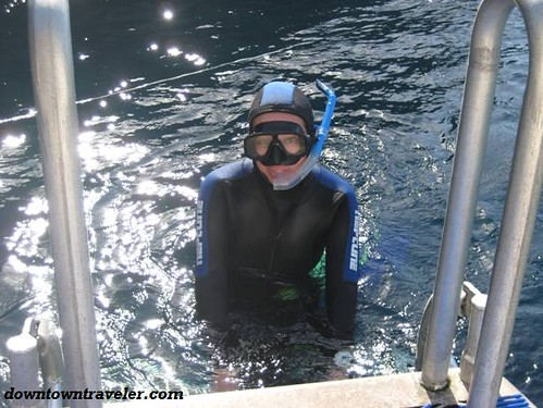 Wearing a wet suit to snorkel in Poor Knights Island, New Zealand.