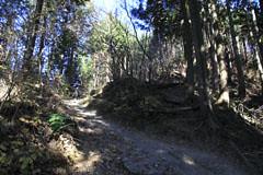 小仏峠の登り