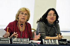CIM Forum Features Panel on Parliaments and the womens rights agenda: State of the art and current challenges (OEA - OAS) Tags: idea forum oas cim oea organizationofamericanstates hemispheric organizacindelosestadosamericanos goyes payss