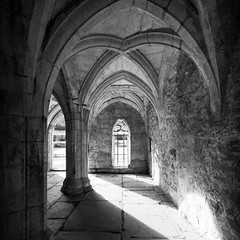 Arches - Cropped (Etrusia UK) Tags: uk greatbritain light blackandwhite abbey wales contrast dark geotagged nikon shadows britishisles zoom unitedkingdom britain religion grain shapes angles sigma monk wideangle arches medieval gb 1020mm tp cistercian middleages llangollen chapterhouse pictureperfect highiso abbot vallecrucisabbey d300 sigma1020mm cadw ultrawideangle sigmalens monstery 1020mmlens sigma1020mmlens nikond300 geo:lat=5298865337670027 geo:lon=31865458467491408 loscistercians