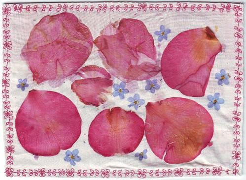 Flower Postcard 4