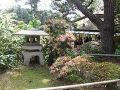IMG_2768 (dinaxpresspr) Tags: sanfrancisco goldengatepark gardens sushi cherryblossoms steppingstones mochi japaneseteagarden teahouse giftshop drumbridge cherryblosssoms