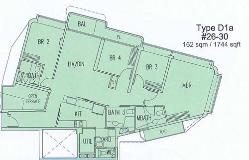 Type D1a
