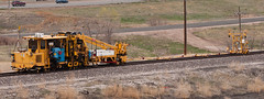 Tamper-Liner (Doug Sundseth) Tags: railroad colorado maintenance bnsf broomfield tamperliner joshspond