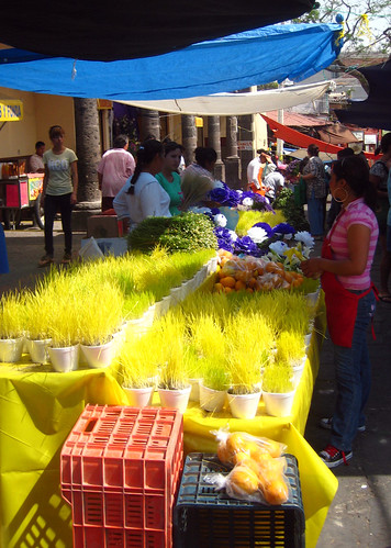 colors: market