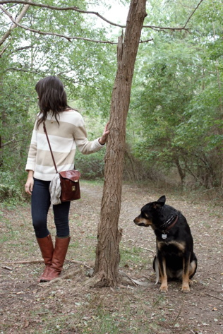treesplit@316