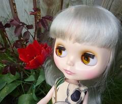 Delilah Daydream in Flower Forest