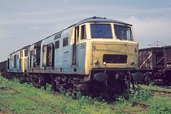 7000 Swindon Works 7Jun75 (david.hayes77) Tags: swindon scrap 7000 class35 hymek swindonworks scrapline