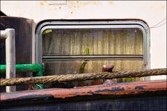Lastkahn #2 (ajurgenowski) Tags: detail deutschland boot ship kahn tub nrw kanal bateau ruhrgebiet schiff herne rheinhernekanal ruhrpott navire schifffahrt riverbarge binnenschiff pageot binnenschifffahrt nikond90 bateaufluvial ausenaufnahme hernermeer