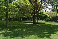 The Botanic Gardens In Glasnevin (infomatique) Tags: park ireland dublin nature garden touristattraction botanicgardens glasnevin infomatique publicparkinfomatique botanicgardensdublininfomatique