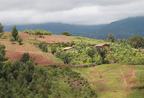 Burundi flickr photo