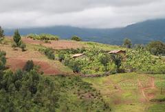 Banga, Burundi 1