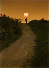 Early Riser (adrians_art) Tags: morning shadow people silhouette sunrise dawn early path bushes blackthorn