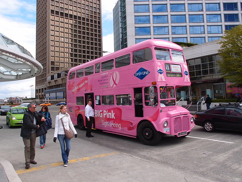 Big Pink Sightseeing Bus