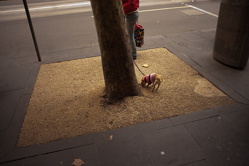 Swanston Street 2011 by PachinkoPictures