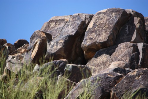 Saguaro Pictographs