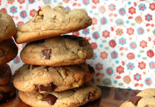 American chocolate cookie recipe