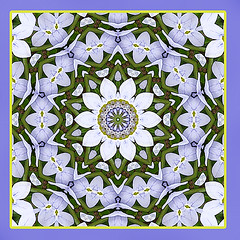 celebrating life (SueO'Kieffe) Tags: nature digital photoshop patterns kaleidoscope mandala spirituality