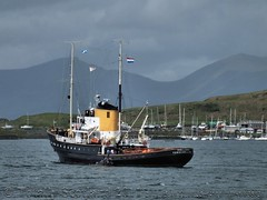 Tug Holland in Oban 1/4