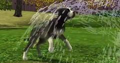 Sims 3 Pets 27