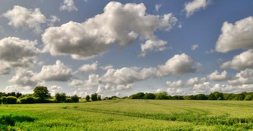 http://farm6.static.flickr.com/5303/5821689845_b25ca3dc9c.jpg