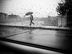 Carwindow Project (Francesco Baldiotti) Tags: bridge blackandwhite rain umbrella walking rainyday streetphotography mobileshot francescobaldiottiphoto carwindowproject